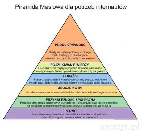 Piramida Maslowa dla potrzeb internautów