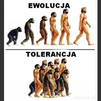 Ewolucja vs tolerancja